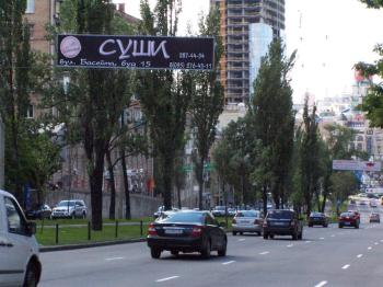 Конструкция №1302 - Сторона А (Фото тролла на Л.Українки б-р, 3)
