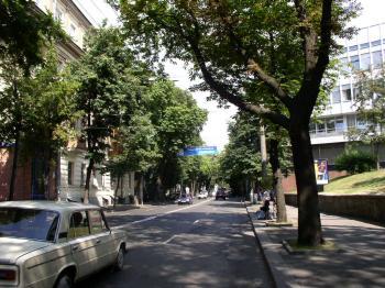 Конструкция №402 - Сторона А (Фото тролла на В.Житомирська вул., 34)