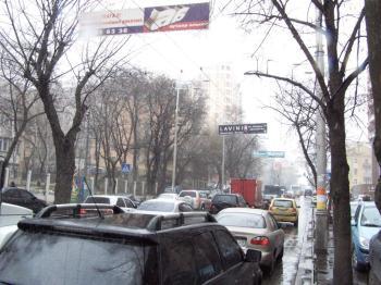 Конструкция №733 - Сторона А (Фото тролла на Жилянська вул., 88)